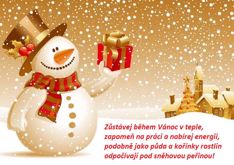 přání k vánocům obrázky ke stažení Vánoční přání ke stažení zdarma: něžné i humorné   KupníSíla.cz přání k vánocům obrázky ke stažení