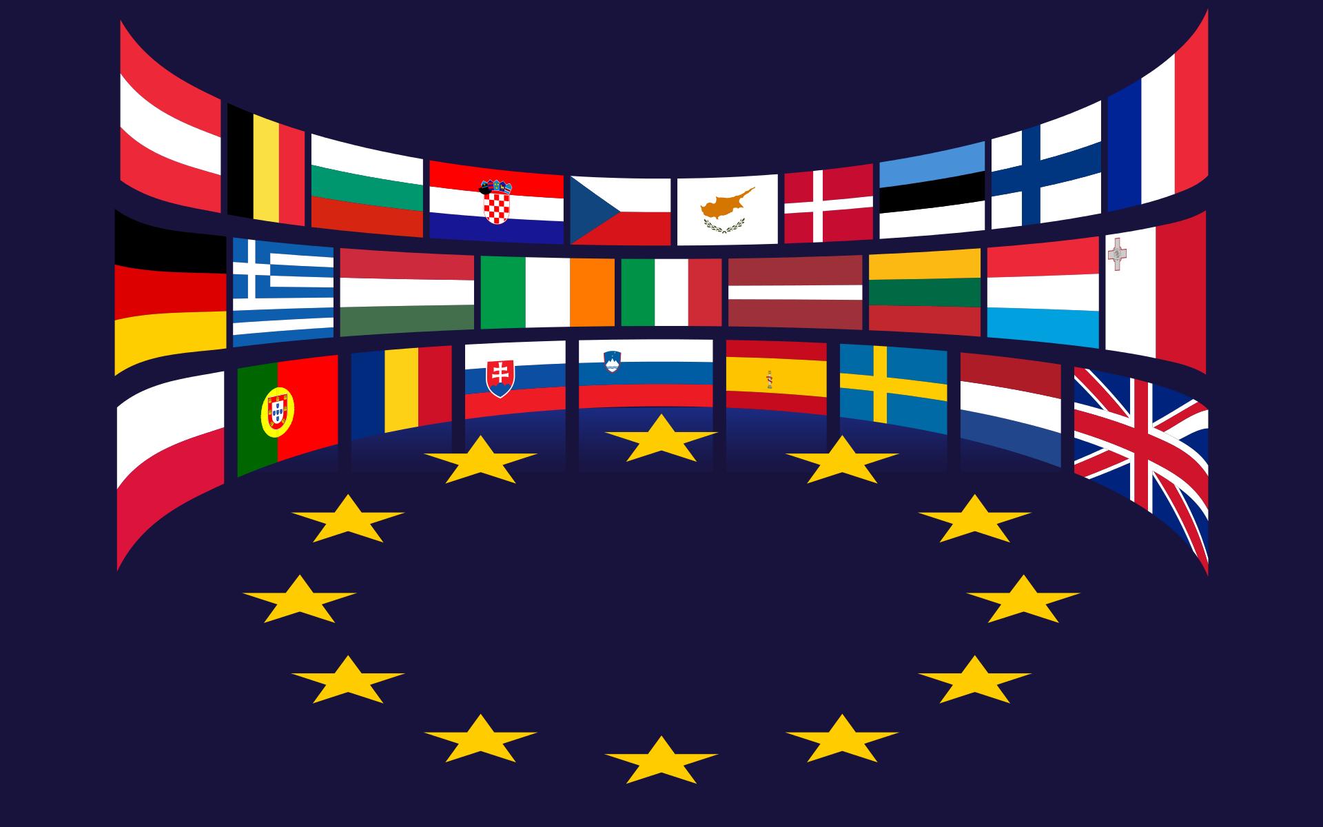 Český stát versus Evropská unie